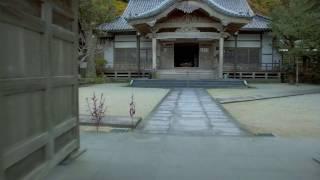 【公式】ULTRA HD ~4kで撮るふるさと 糸島・龍国寺~ 福岡