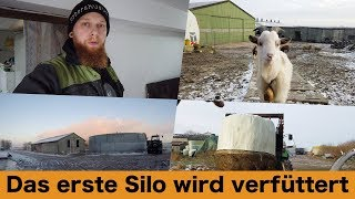 FarmVLOG#190 - Das erste Silo wird verfüttert