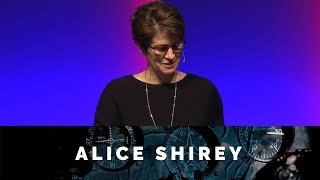 You Will Experience Turbulence: Courage - Alice Shirey