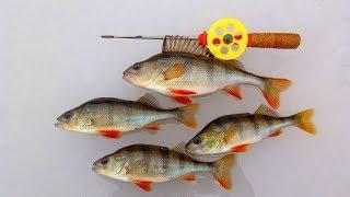 Зимняя рыбалка Ловля окуня на БЕЗМОТЫЛКУ