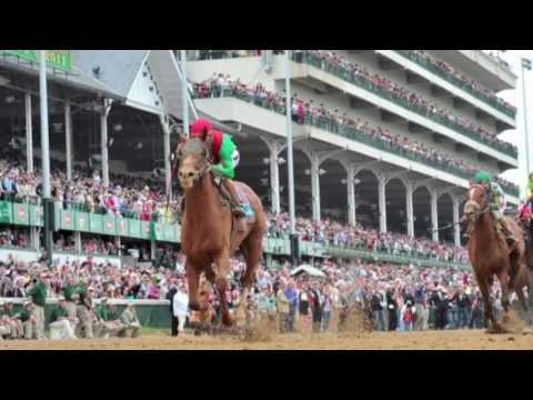VetsOnCall – Leg surgery keeps horses healthy for Derby