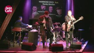 Hammond Eggs feat Randy Brecker 13_4_ 2017