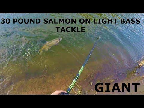TUOLUMNE RIVER SALMON FISHING (40 POUNDER) LIGHT BASS TACKLE