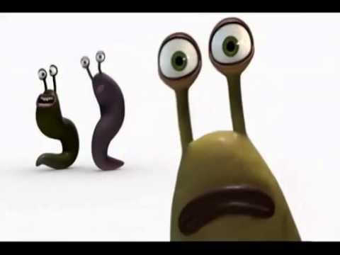 singing slugs everybody dance now youtube