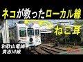 ネコが救った廃線危機!和歌山電鉄 貴志川線。The station master cat. Wakayama/Jap…