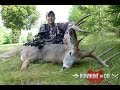 Awesome Whitetail Bow hunting Video! Wisconsin Buck goes down!