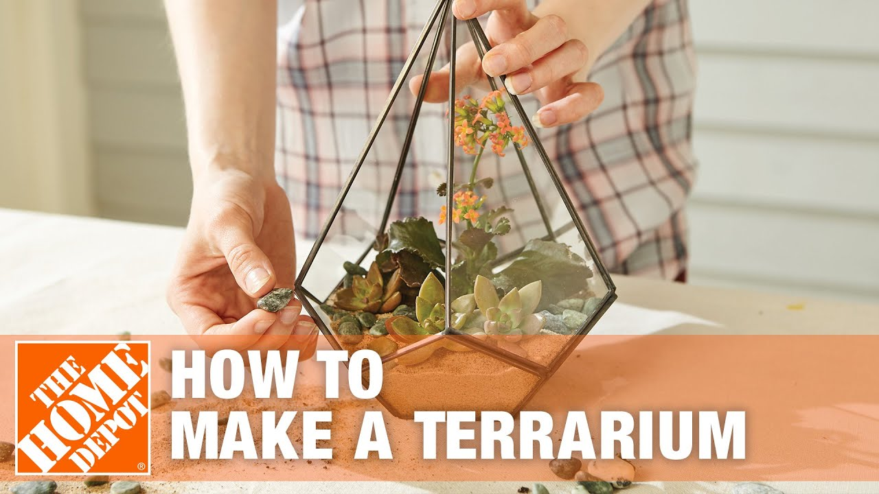 How To Make A Terrarium The Home Depot Youtube