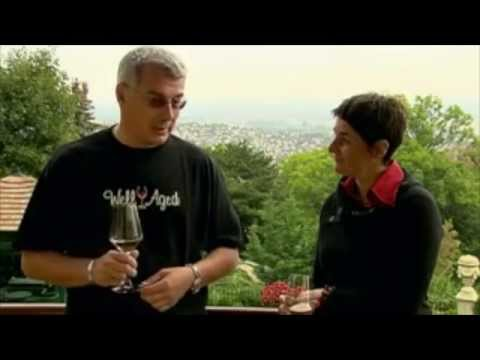 A Brief History of Hungarian Wines