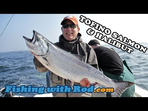 Tofino Salmon & Halibut   Fishing with Rod