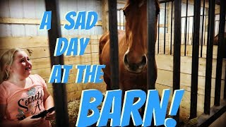 our saddest day at the barn day 151 053118