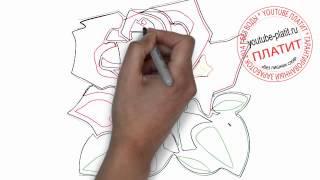 Роза нарисованная карандашом  Как нарисовать розу поэтапно(Как нарисовать розу поэтапно простым карандашом за короткий промежуток времени. Видео рассказывает о том,..., 2014-06-27T06:53:25.000Z)