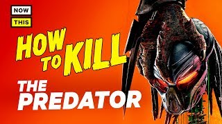 How to Kill the Predator | NowThis Nerd