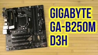 распаковка Gigabyte GA-B250M-D3H