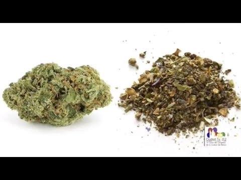 ¿Qué Es La Mariguana Sintética?