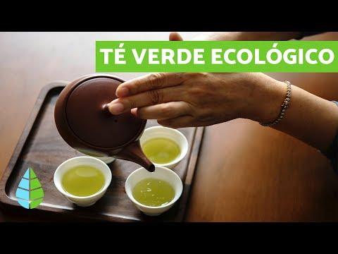 El te verde es malo para colon