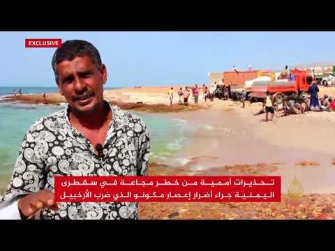 تحذيرات أممية من خطر مجاعة في سقطرى اليمنية  - نشر قبل 2 ساعة