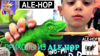 ALE-HOP Необычные вещи и сувениры в але-оп Обзор магазина Visitamos ALE-HOP 2019