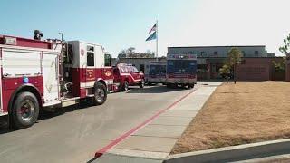 Playground Terror: Dog Bites Nine Children at Oklahoma School