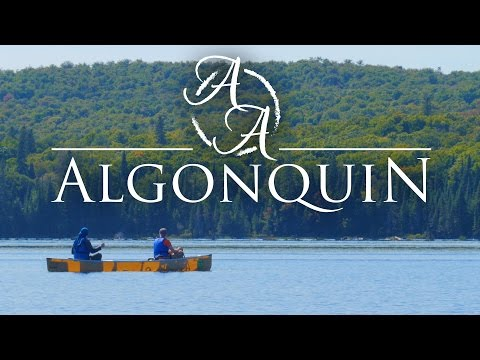 Algonquin Provincial Park In 4K | Canoe Camping And Bushcraft In Ontario, Canada