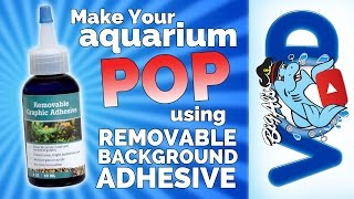 Make Your Aquarium POP with Removable Background Adhesive | Big Al's