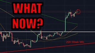 What Now? | Bitcoin Market Analysis | WARNING: Only My Opinion [Crypto News]