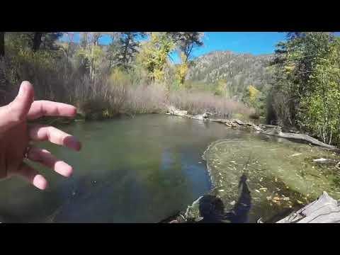 Tenkara Fishing The Cimarron River, NM
