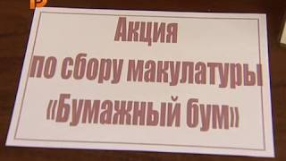 В Костроме собирают макулатуру, чтобы помочь приюту для животных