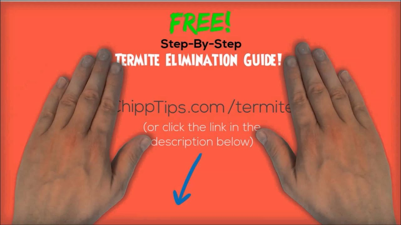 How to get rid of termites yourself best treatment for getting rid how to get rid of termites yourself best treatment for getting rid of termites solutioingenieria Images