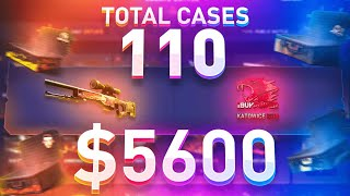 I did a $5600 Case Opening Battle, One of EVERY Case!