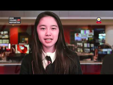 SMA NEWS Spring Term 1 - (BBC YOUNG REPORTER) 2018/2019