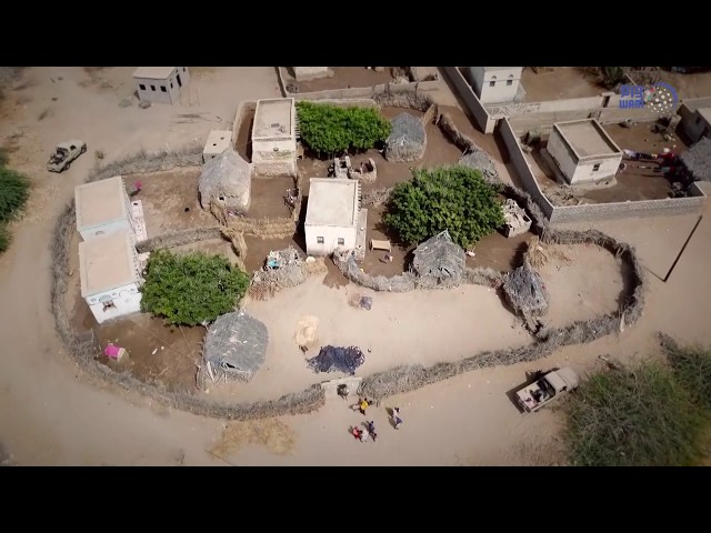 Arab Coalition doctors make home visits in Hodeidah