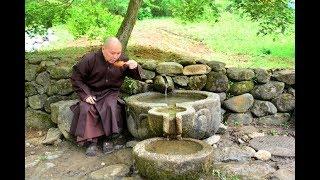 Trụ trì chùa Hoằng Pháp phát hiện kinh hoàng rất nhiều chất độc xâm nhập vào Việt Nam