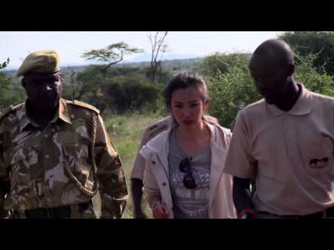Li BingBing's new mini-documentary on Elephants and Ivory Poaching-Short Version