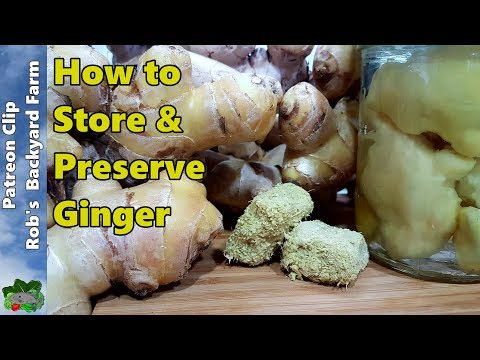 7 Ways to Store GINGER