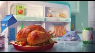 Игрушки по мультфильму Тайная жизнь домашних животных в Чадорадо! The Secret Life Of Pets