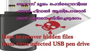 How To Recover Hidden Files from Virus Infected USB Pen Drive and Memory Cards