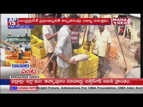 AP Govt Focus on Aqua Farming Development | West Godavari | Mahaa News