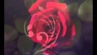 1.1 КАРАОКЕ ЯН РАЙБУРГ ДАРИТЕ ЖЕНЩИНАМ ЦВЕТЫ(КАРАОКЕ ПОД ЗАКАЗ ПРИ НАЛИЧИИ МИНУСА,ПИШИТЕ!!!, 2013-03-27T17:12:43.000Z)