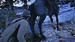 Red Dead Redemption 2 - Shrinking Horse Balls