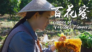 Sweet Present from Nature  Yunnan Honey of Various Flowers