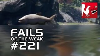 Fails of the Weak: Ep. 221   Rooster Teeth