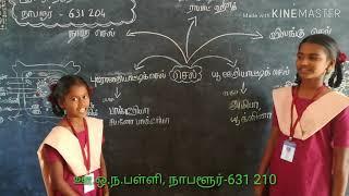 செல்(அறிவியல்)-Cell(Science)-P.U.M.S., Nabalur, Thiruvalangadu Block