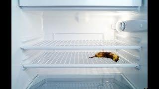 ¿Qué hay en la heladera de los cordobeses?