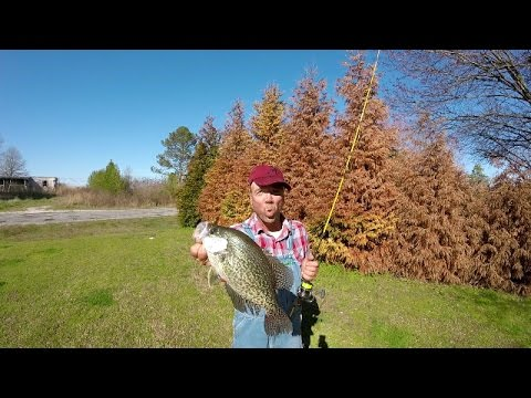 Crappie Fishing After A Spring Cold Front - Lake Guntersville
