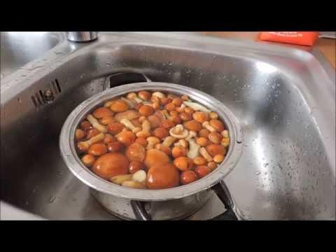 Kак засолить грибы маслята / лучший рецепт