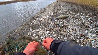 рыбалка весной 2021 НОВЫЙ способ ЛОВЛИ РЫБЫ