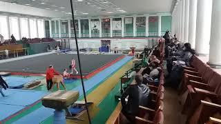 Соревнования спортивная гимнастика  3 разряд Арефьев Егор(5)