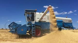 Fortschritt E 512 harvesting  2018.