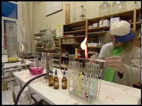 FILM: Sinterklaas en het raadsel van de rode pepernoot (2000)