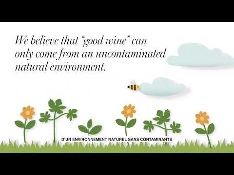 Santa Margherita Pinot Grigio | Carbon Neutral Cer...